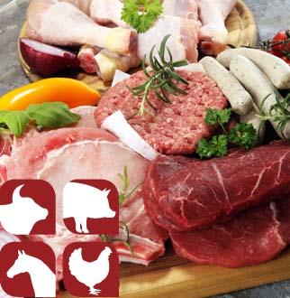 Emilia Romagna Pontetaro (PR) • Carni Avicole • Carne Bovina – Romagnola • Carne Equina • Carne Suina  www.macelleriabagatti.com…