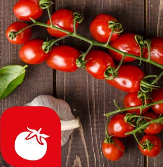 • Pomodoro San Marzano dell'Agro Sarnese Nocerino D.O.P. • Pomodoro Emiliano…